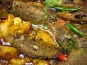 Bengali foods , fish curry bengali style foods of kolkata